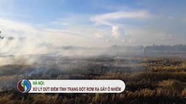 Hà Nội: Xử lý dứt điểm tình trạng đốt rơm rạ gây ô nhiễm môi trường