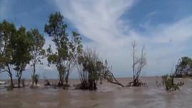 Bộ TN&MT rà soát, sửa đổi Quyết định xác định mực nước triều ven biển