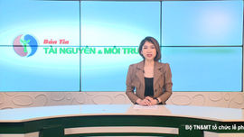 Bản tin truyền hình Tài nguyên và Môi trường số 15/2021 (số 182)