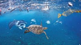 Góp ý dự thảo Đề án Việt Nam chủ động tham gia đàm phán và xây dựng Thỏa thuận toàn cầu về rác thải nhựa đại dương