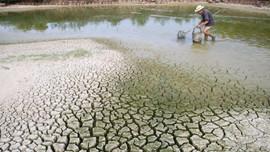Chi tiết hóa nội dung biến đổi khí hậu trong Luật Bảo vệ môi trường