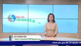 Bản tin truyền hình Tài nguyên và Môi trường số 27/2021 (số 194)
