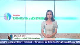 Bản tin truyền hình Tài nguyên và Môi trường số 31/2021 (Số 198)