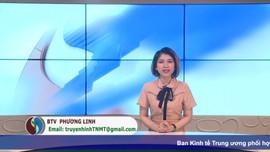 Bản tin truyền hình Tài nguyên và Môi trường số 35/2021 (số 102)