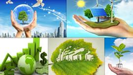 """Hoàn thiện dự thảo """"Chiến lược quốc gia về biến đổi khí hậu"""" đến năm 2050"""