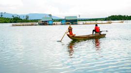 Thẩm định Quy hoạch tổng hợp lưu vực sông Sê San