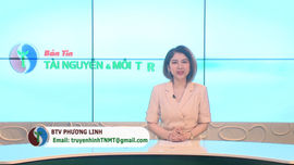 Bản tin truyền hình Tài nguyên và Môi trường số 39/2021 (số 206)
