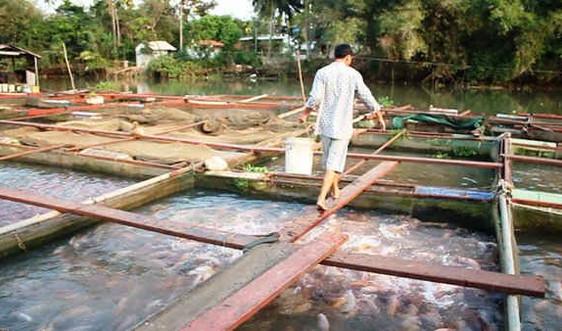 Chủ động tái tạo nguồn lợi thủy sản