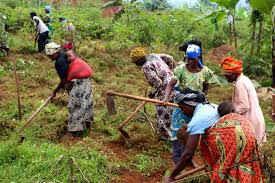 Bình đẳng giới là cơ bản cho các nỗ lực bảo vệ môi trường