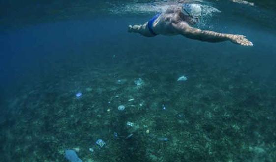 LHQ: Hạn chế sử dụng sản phẩm nhựa để bảo vệ đại dương