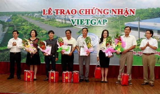 40 trang trại heo của C.P. Việt Nam đạt chứng nhận VietGap