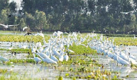 3 năm thực hiện Chiến lược quốc gia về ĐDSH: 8 khu Ramsar được quốc tế công nhận