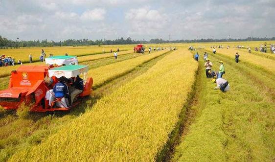 Bảo vệ và sử dụng hợp lý tài nguyên đất trong xu hướng công nghiệp hóa