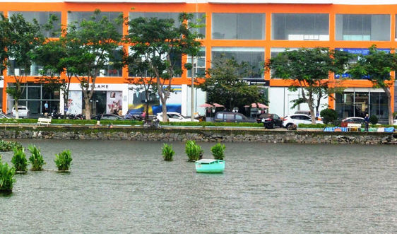 """Giám sát môi trường nước bằng công nghệ """"made in Việt Nam"""""""
