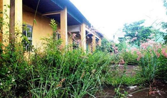 Gia Lai: Để 315 phòng học bị bỏ hoang, ai chịu trách nhiệm?