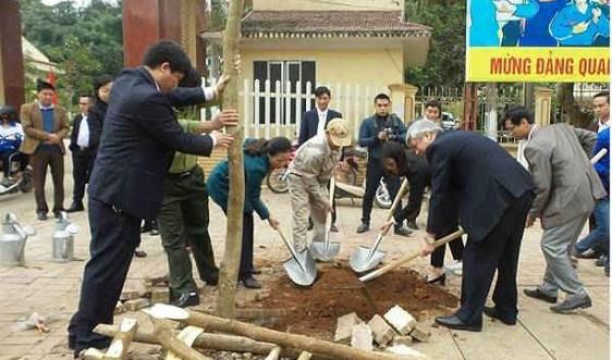 Sơn La: Trồng 1 triệu cây phân tán trong năm 2018