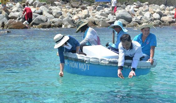 Thả 2.400 con cá giống, hải sâm tái tạo nguồn lợi thủy sản vịnh Nha Trang