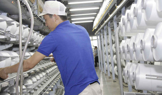NMXS Đình Vũ không bị ảnh hưởng bởi việc Thổ Nhĩ Kỳ áp thuế đối với sợi POY