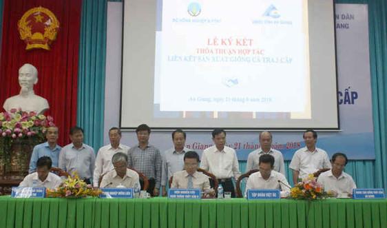 Tập đoàn Việt - Úc ký kết  tham gia Đề án cá tra 3 cấp