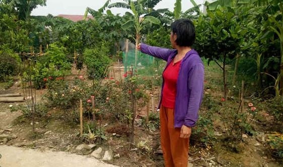 Dự án Tây Nam Kim Giang I, Hà Nội: Cần sự công khai, minh bạch