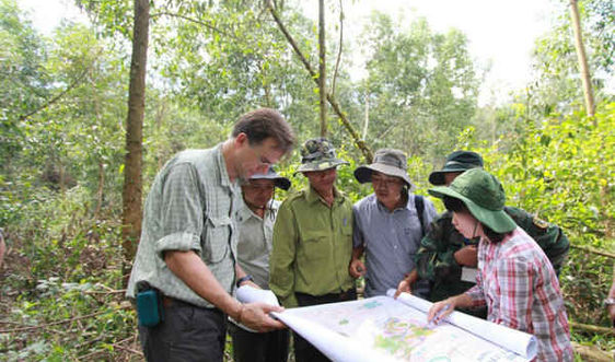 Ứng dụng công nghệ quản lý rừng: Cách mạng của ngành lâm nghiệp