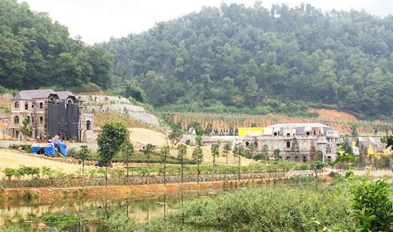 Huyện Sóc Sơn: Nan giải bài toán cắm mốc giới rừng