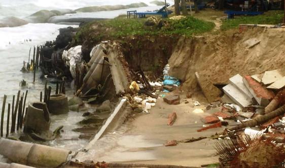 Quảng Nam: Bờ biển Cửa Đại tiếp tục sạt lở nghiêm trọng