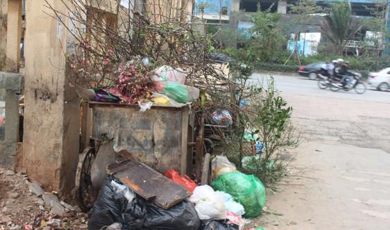 Sau Tết rác đào, rác quất...
