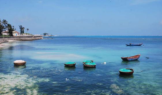 Quảng Ngãi: Đóng tàu tuần tra và lắp đặt phao phân vùng tại Khu bảo tồn biển Lý Sơn