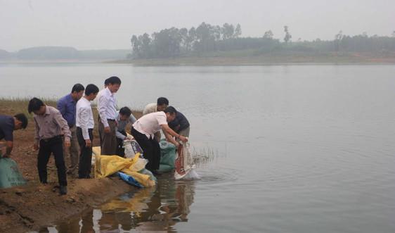 Quảng Trị: Thả hơn 10.000 cá bổ sung tái tạo nguồn lợi thủy sản
