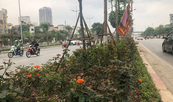 Hà Nội: Chất lượng không khí tiếp tục được cải thiện
