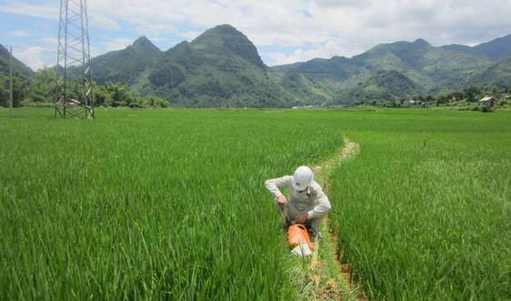 Triển khai Dự án điều tra, đánh giá chất lượng, tiềm năng đất đai tỉnh Sơn La