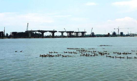 Việc lập ĐTM đập dâng hạ lưu sông Trà Khúc còn nhiều băn khoăn