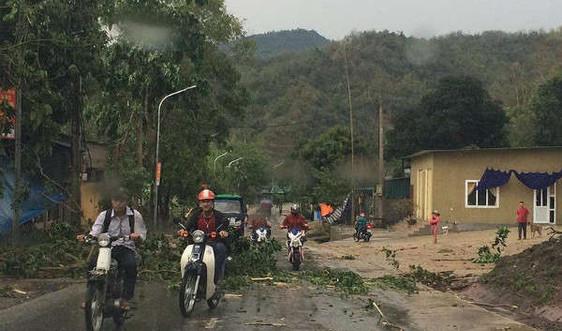 Mưa dông diện rộng, cảnh báo lũ quét và sạt lở đất tại Quảng Ninh và Hà Giang