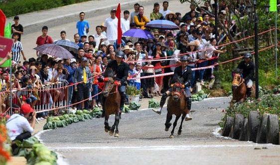"""Nắng nóng, du khách đổ về Fansipan tận hưởng tiết trời mát lạnh, thưởng thức giải đua """"Vó ngựa trên mây"""""""