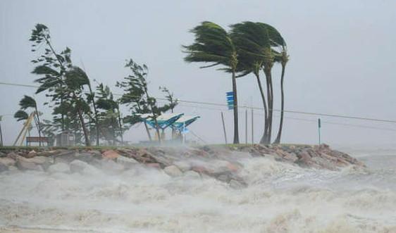 Thời tiết khắc nghiệt phá hủy gần 50% hệ sinh thái biển của Úc kể từ năm 2011