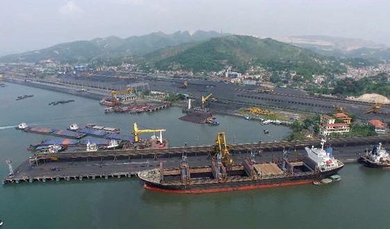 Tập đoàn TKV công khai minh bạch nhập khẩu than