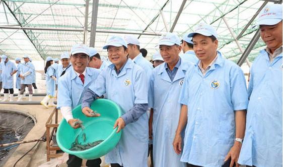Sức lan tỏa từ Tập đoàn Việt - Úc