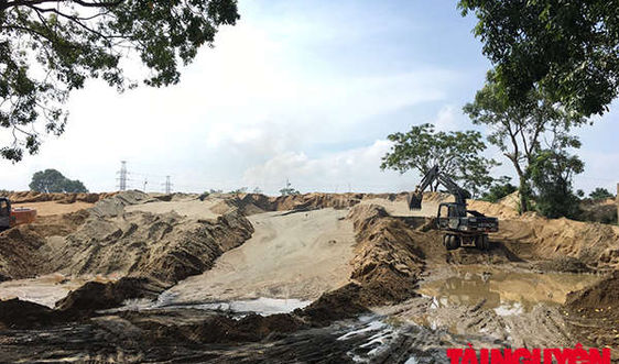 TP. Thanh Hóa: Nhiều bãi tập kết cát gây cản trở thoát lũ, vi phạm Luật Đê điều