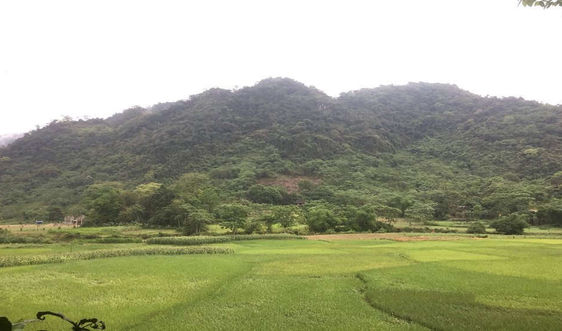 Chi trả dịch vụ môi trường rừng giúp người dân gắn bó với rừng