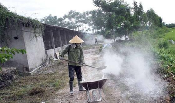 Nghệ An: Triển khai tháng tổng vệ sinh, khử trùng tiêu độc môi trường