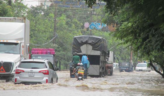 Bình Định, Phú Yên ứng phó với cơn bão số 5