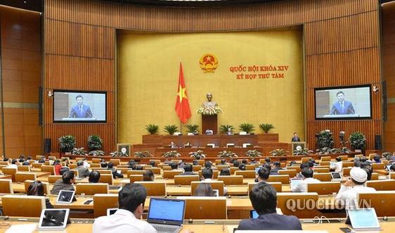 Quốc hội nghe Tờ trình Luật sửa đổi, bổ sung một số điều của Luật giám định tư pháp