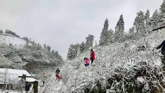 Thời tiết 7/12: Vùng núi cao đề phòng băng giá và sương muối