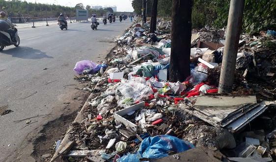 """Hà Nội: Đại lộ Thăng Long """"ngập"""" rác, phế thải"""