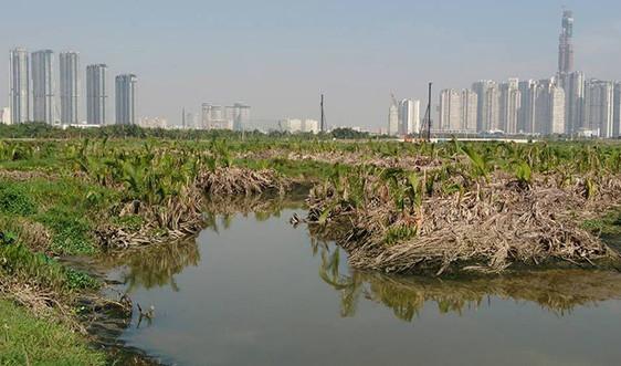 HĐND TP.HCM thông qua Bảng giá đất giai đoạn 2020 – 2024