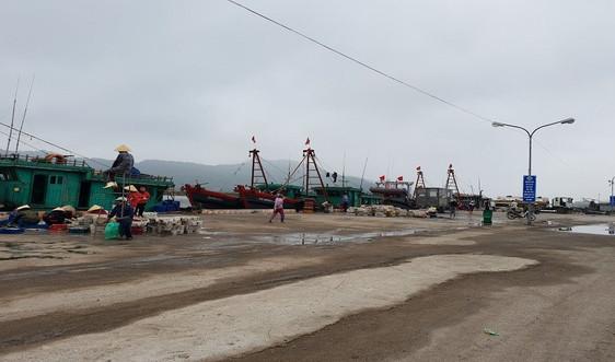 Thanh Hóa: Bảo vệ nguồn lợi thủy sản trên các vùng biển