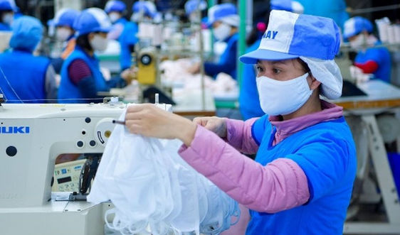 Vinatex: Sản xuất khẩu trang bằng vải dệt kim kháng khuẩn tiêu chuẩn Nhật Bản