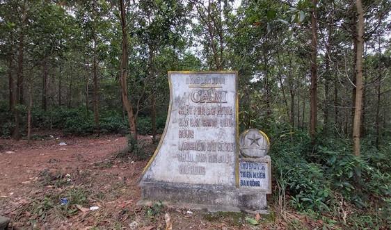 """Tiếp bài """" Quảng Trị : Nghi vấn mở đường qua rừng đặc dụng để vận chuyển gỗ"""": Kiểm tra xác minh nội dung Báo nêu"""