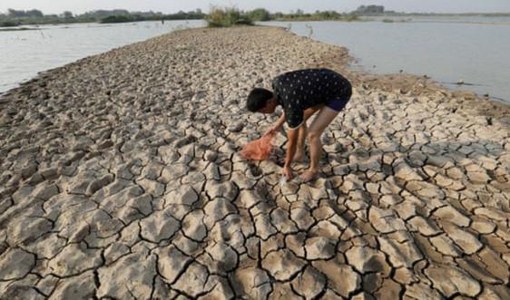 WMO dự báo nhiệt độ toàn cầu cao hơn mức trung bình ngay cả khi không có El Nino